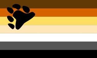bandera-osos